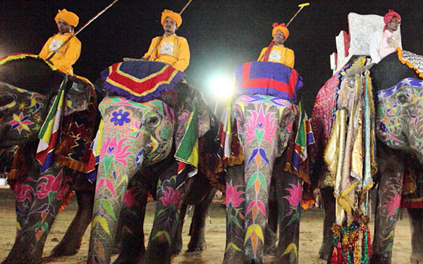 royal-india-elephant-polo